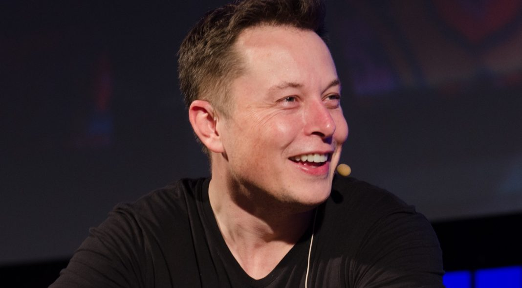 Elon-Musk spindox