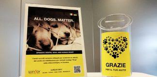 Dryg, locandina per raccogliere fondi per i cani ucraini