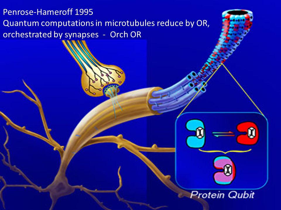 Modello Orch OR di Penrose e Hameroff