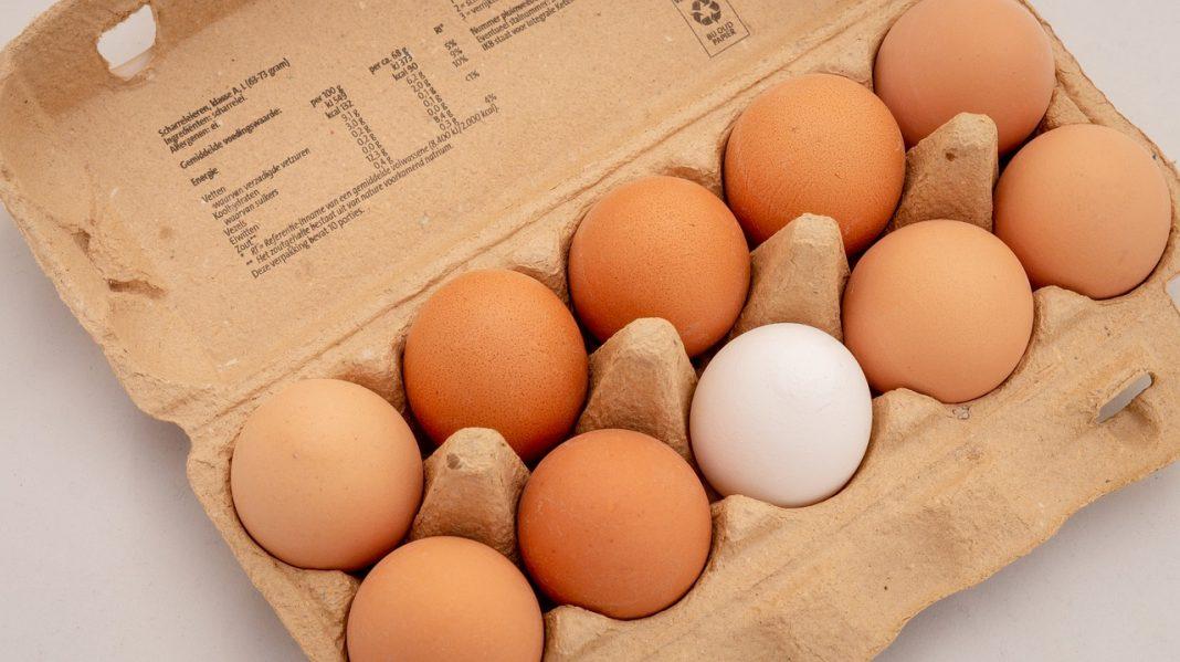 Anomaly detection: qual è l'intruso, fra dieci uova (Foto di Melk Hagelslag da Pixabay)