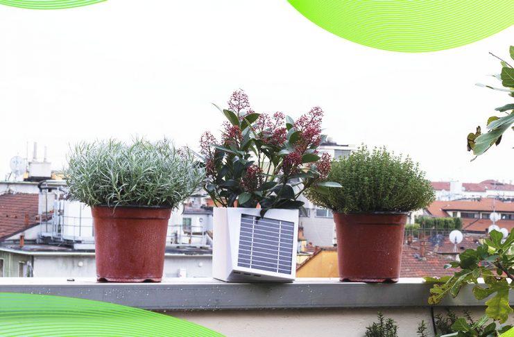 Wiseair e il vaso da balcone Arianna