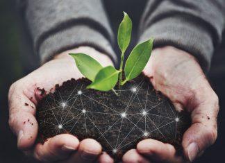 Food industry, una filiera sostenibile